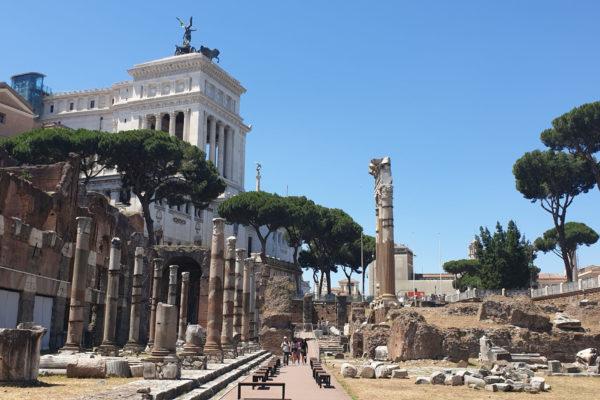 Forum of Caesar Jamie Heath