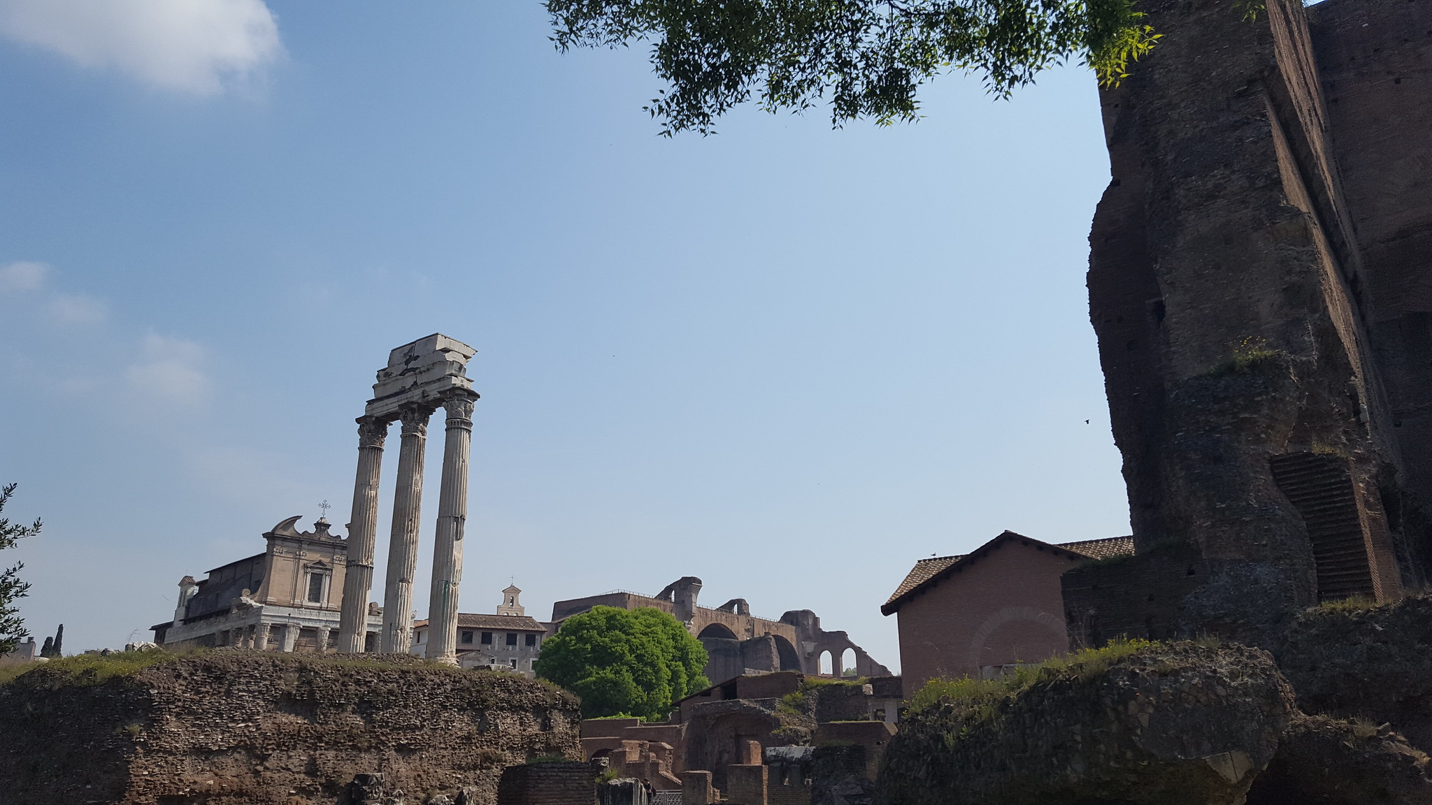 Temple of Castor and Pollux (Castor, Aedes, Templum)