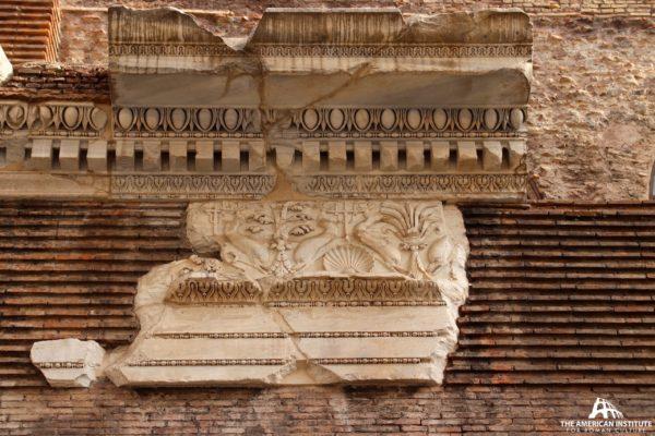 Basilica Neptuni #1